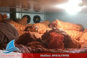 Lắp đặt kho lạnh bảo quản nông sản khoai tây tại Bắc Ninh
