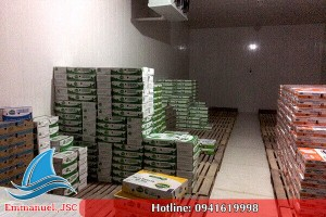 Lắp đặt kho lạnh bảo quản thực phẩm tại nhà hàng sansan Bắc Ninh
